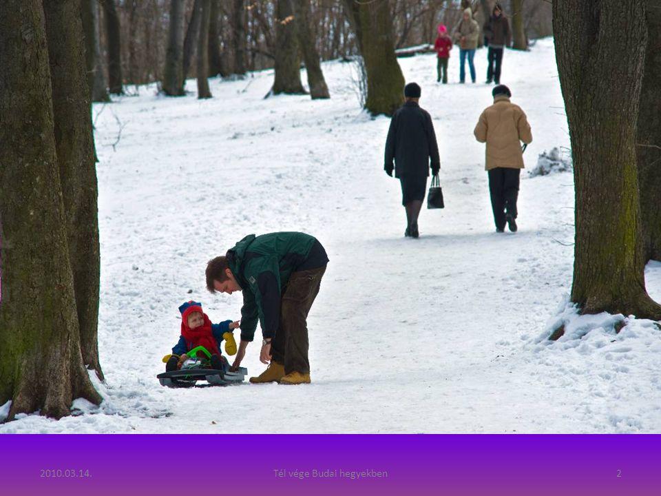 Tél vége Fényképezte: Szedő Iván, 2010
