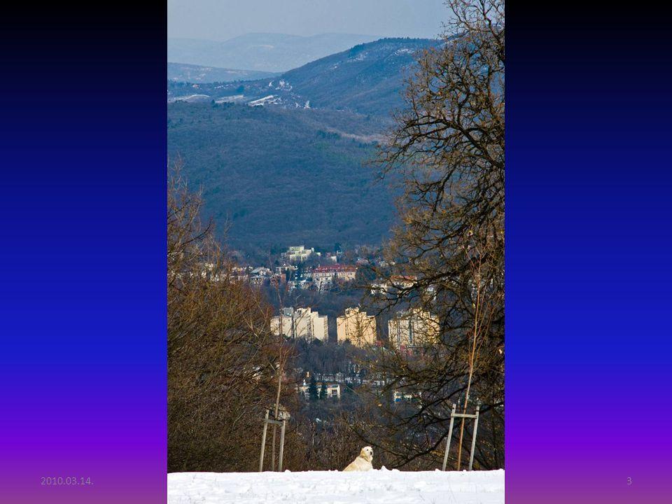 2010.03.14.Tél vége Budai hegyekben2