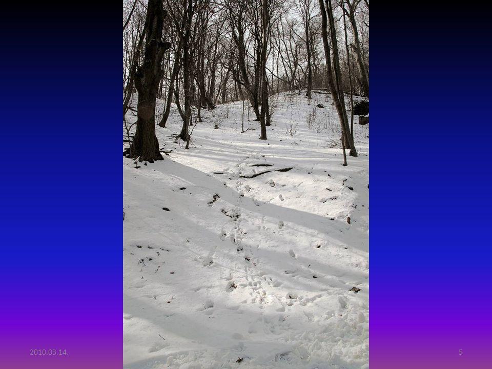 2010.03.14.Tél vége Budai hegyekben15 VÉGE Válaszd ki a következő diasorozatomat az alábbi címre való kattintással: http://iszedo.eu/pps1.htm Copyright: Szedő Iván Szedő IvánSzedő Iván Fényképezőgép: Sony DSLR A900 + Minolta objektívek