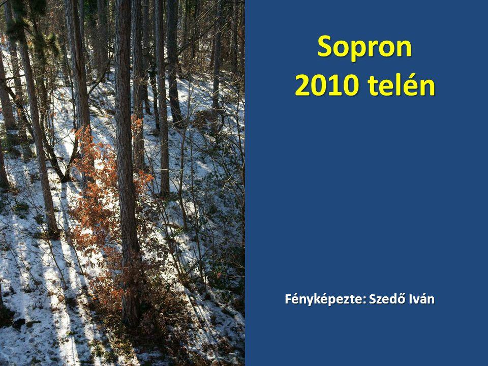 Sopron 2010 telén Fényképezte: Szedő Iván