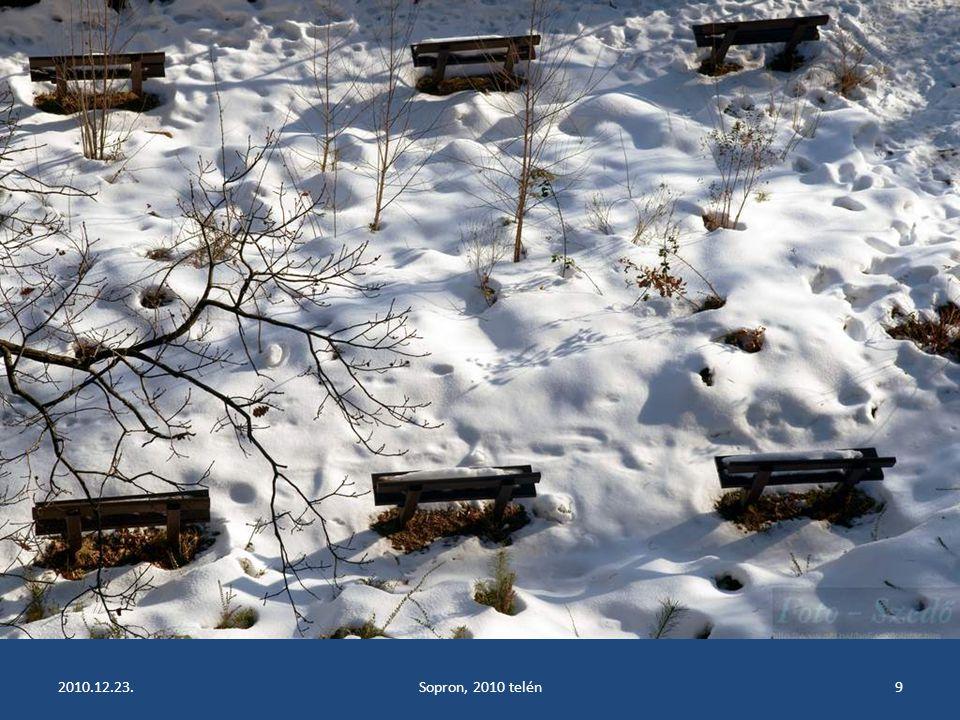2010.12.23.Sopron, 2010 telén8
