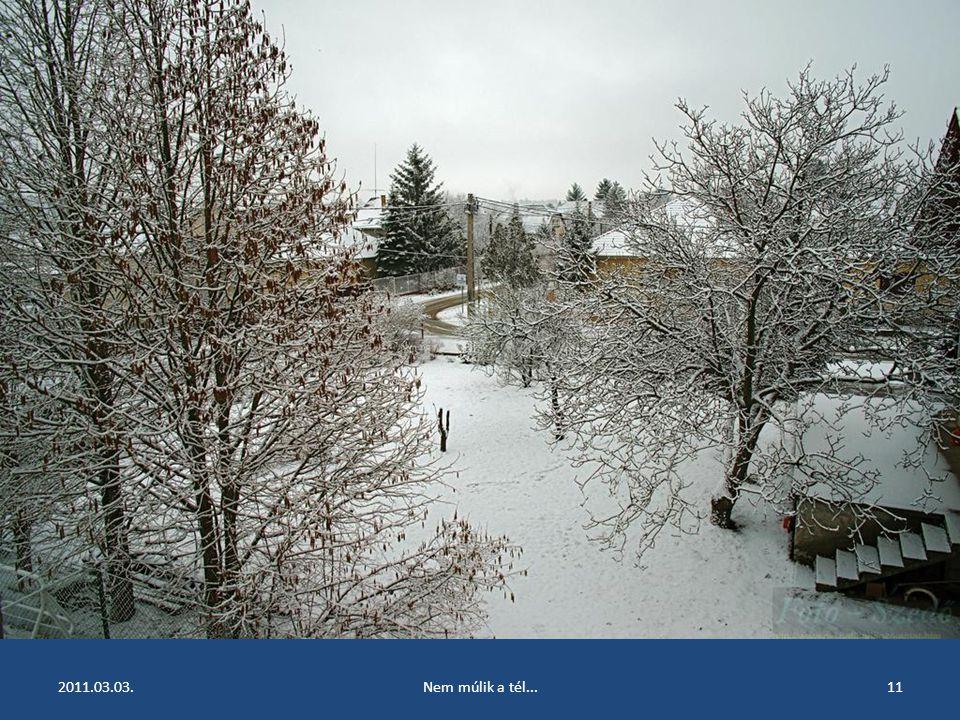 2011.03.03.Nem múlik a tél...10