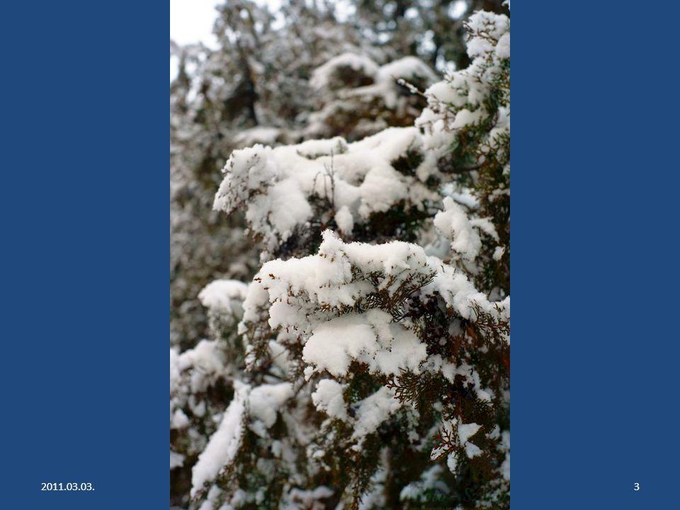 2011.03.03.Nem múlik a tél...2