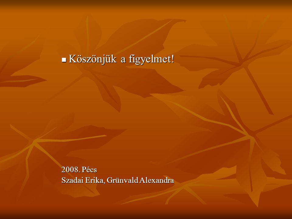 Köszönjük a figyelmet! Köszönjük a figyelmet! 2008. Pécs Szadai Erika, Grünvald Alexandra