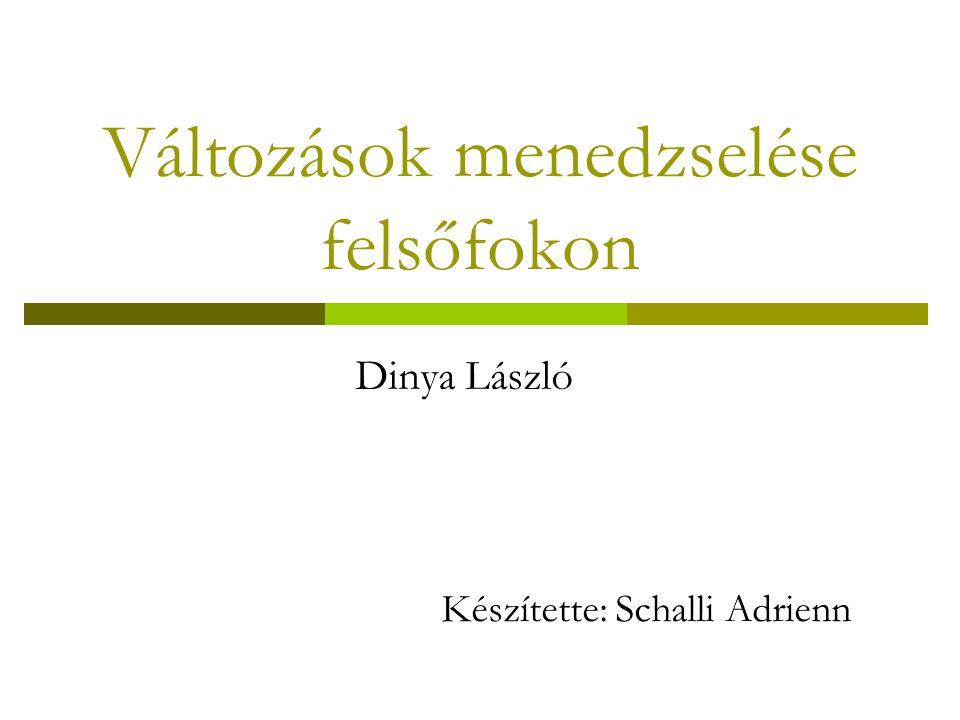 Változások menedzselése felsőfokon Készítette: Schalli Adrienn Dinya László