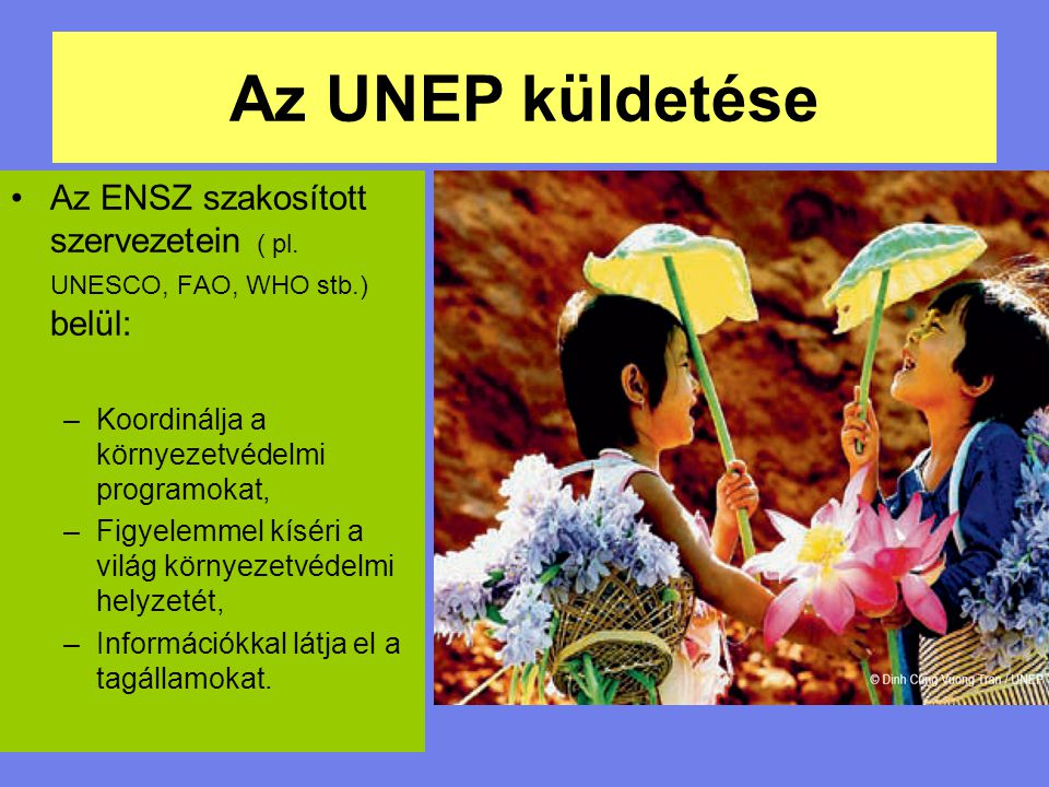 Az UNEP küldetése Az ENSZ szakosított szervezetein ( pl. UNESCO, FAO, WHO stb.) belül: –Koordinálja a környezetvédelmi programokat, –Figyelemmel kísér