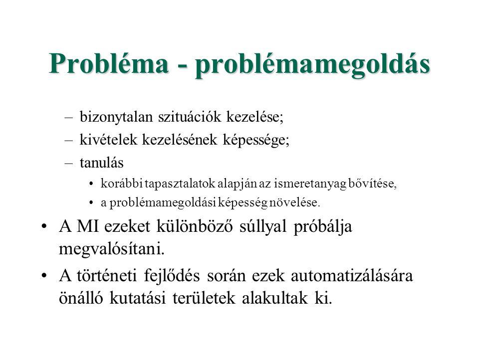 Probléma - problémamegoldás –bizonytalan szituációk kezelése; –kivételek kezelésének képessége; –tanulás korábbi tapasztalatok alapján az ismeretanyag