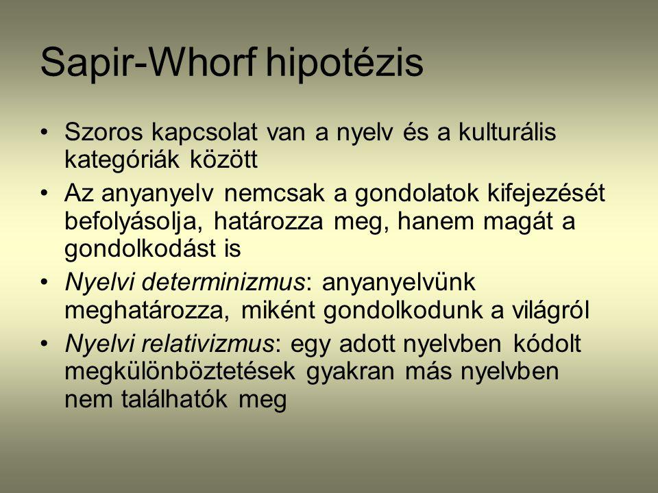 Sapir-Whorf hipotézis Szoros kapcsolat van a nyelv és a kulturális kategóriák között Az anyanyelv nemcsak a gondolatok kifejezését befolyásolja, határ