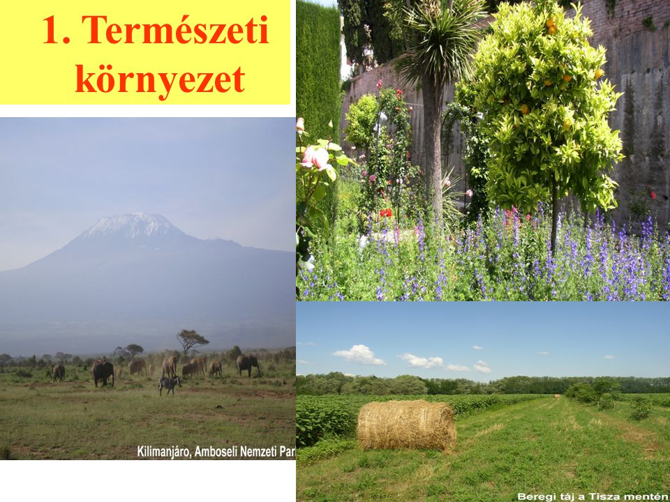 1. Természeti környezet