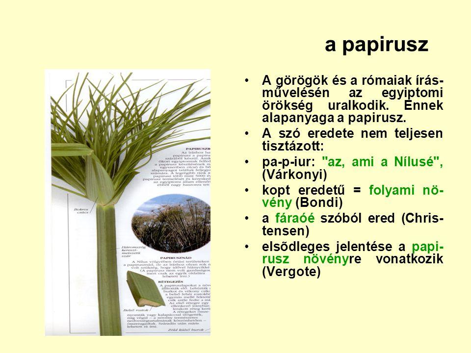 a papirusz A görögök és a rómaiak írás- művelésén az egyiptomi örökség uralkodik. Ennek alapanyaga a papirusz. A szó eredete nem teljesen tisztázott:
