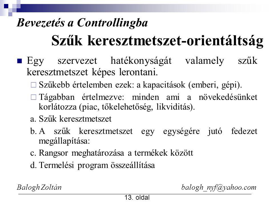 Balogh Zoltán balogh_nyf@yahoo.com 13. oldal Egy szervezet hatékonyságát valamely szűk keresztmetszet képes lerontani.  Szűkebb értelemben ezek: a ka