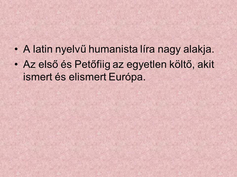 A latin nyelvű humanista líra nagy alakja. Az első és Petőfiig az egyetlen költő, akit ismert és elismert Európa.