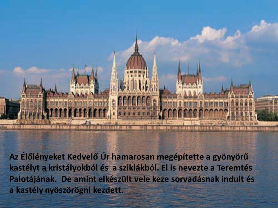 Az Élőlényeket Kedvelő Úr hamarosan megépítette a gyönyörű kastélyt a kristályokból és a sziklákból.
