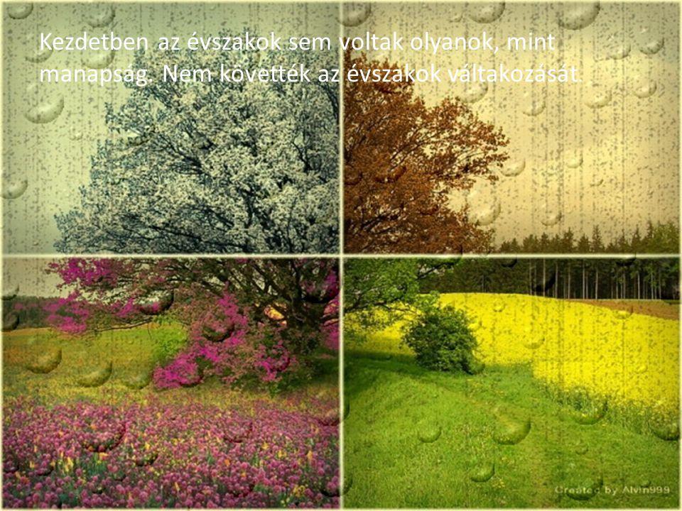 Az erdők, a növények maguktól nőttek, szaporodtak.