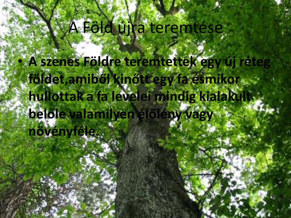 A Föld újra teremtése A szenes Földre teremtettek egy új réteg földet,amiből kinőtt egy fa ésmikor hullottak a fa levelei mindig kialakult belőle vala