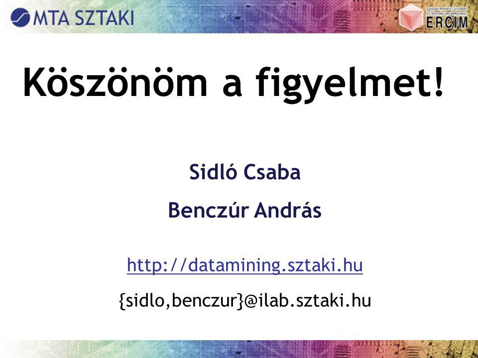Köszönöm a figyelmet! Sidló Csaba Benczúr András http://datamining.sztaki.hu {sidlo,benczur}@ilab.sztaki.hu