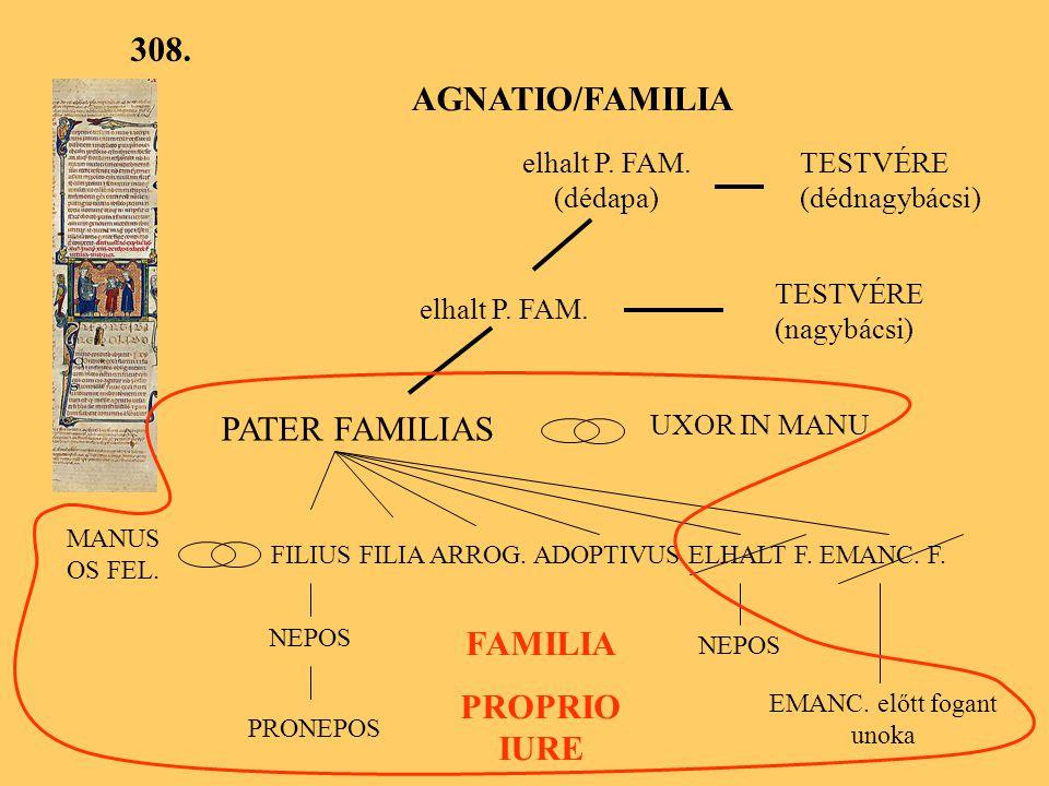 308.AGNATIO/FAMILIA elhalt P. FAM. (dédapa) TESTVÉRE (dédnagybácsi) elhalt P.