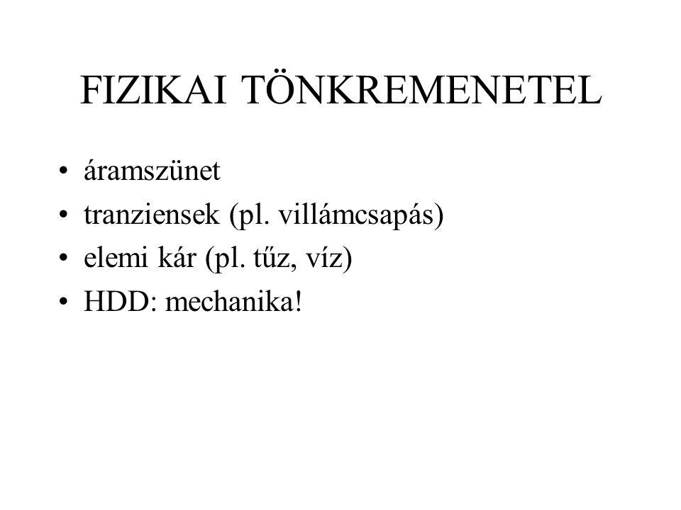 FIZIKAI TÖNKREMENETEL áramszünet tranziensek (pl. villámcsapás) elemi kár (pl.
