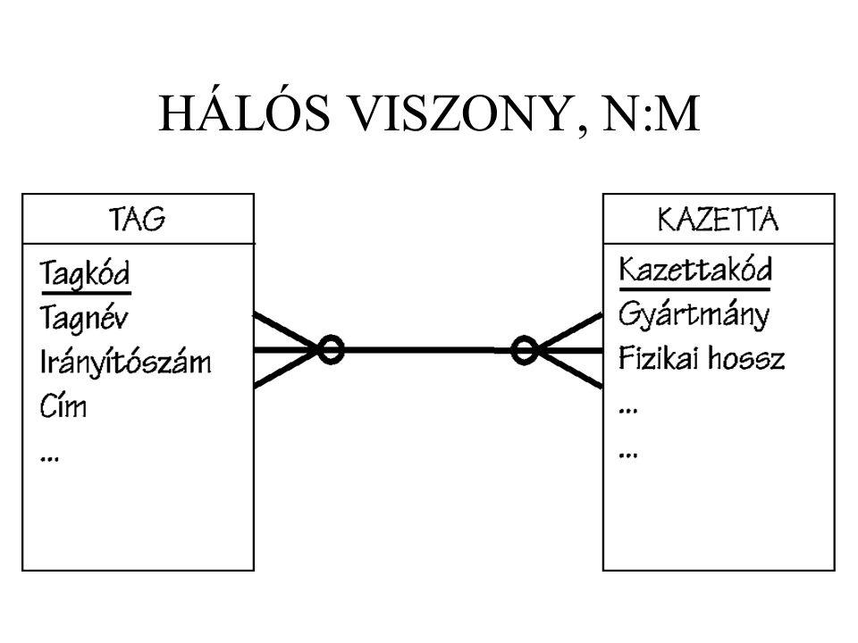 HÁLÓS VISZONY, N:M