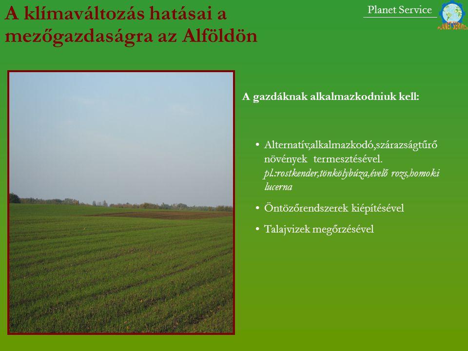 A klímaváltozás hatásai a mezőgazdaságra az Alföldön A gazdáknak alkalmazkodniuk kell: Alternatív,alkalmazkodó,szárazságtűrő növények termesztésével.