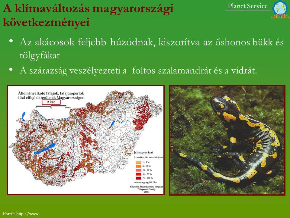 A klímaváltozás magyarországi következményei Az akácosok feljebb húzódnak, kiszorítva az őshonos bükk és tölgyfákat A szárazság veszélyezteti a foltos szalamandrát és a vidrát.