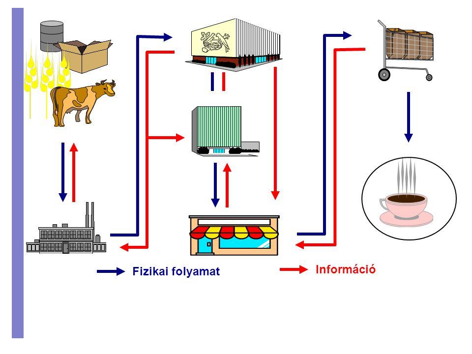 Fizikai folyamat Információ