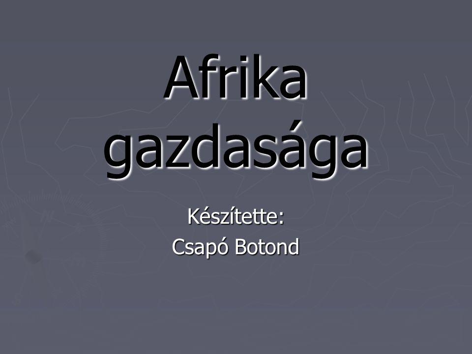 Afrika gazdasága Készítette: Csapó Botond