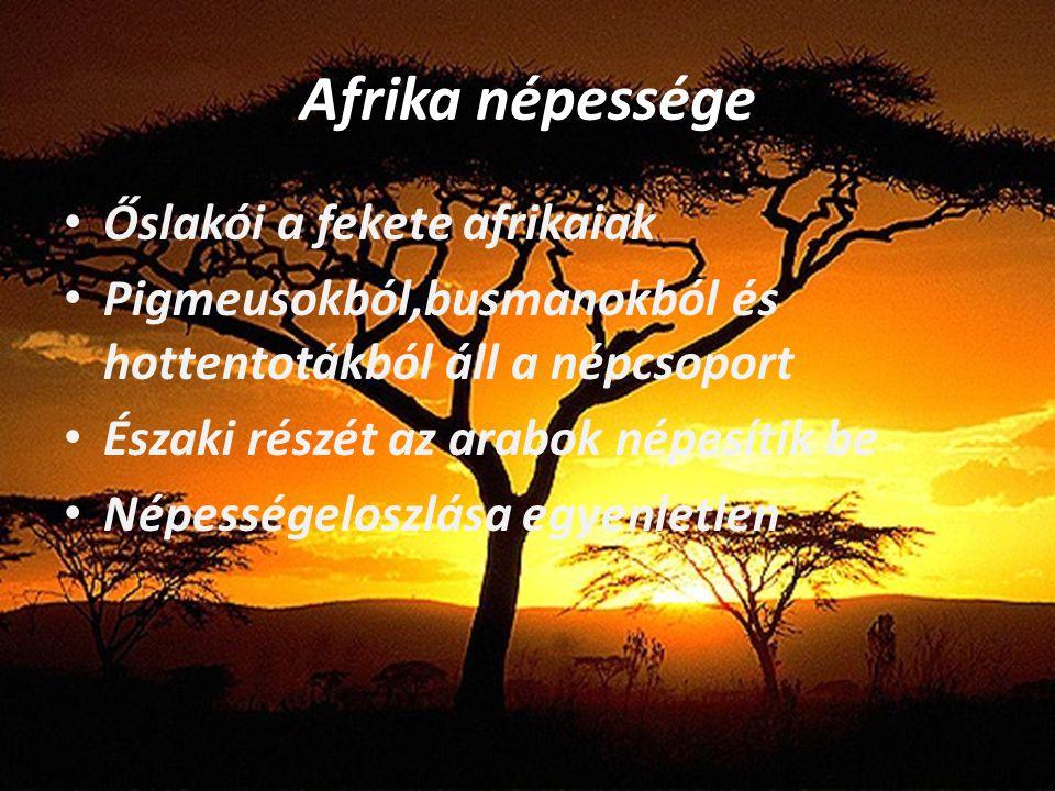 Afrika népessége Őslakói a fekete afrikaiak Pigmeusokból,busmanokból és hottentotákból áll a népcsoport Északi részét az arabok népesítik be Népessége