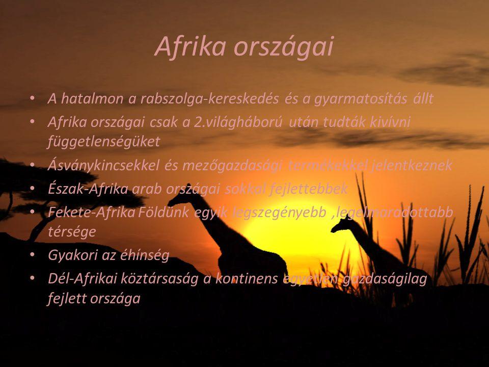 Afrika országai A hatalmon a rabszolga-kereskedés és a gyarmatosítás állt Afrika országai csak a 2.világháború után tudták kivívni függetlenségüket Ás
