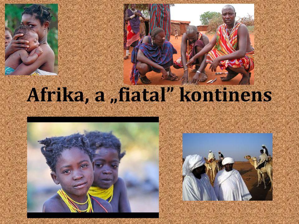 Afrika népessége Fekete-Afrika Szaharától délre Negrid emberfajta – Szudániak – Bantuk – Pigmeusok – Busmanok – Hottentották