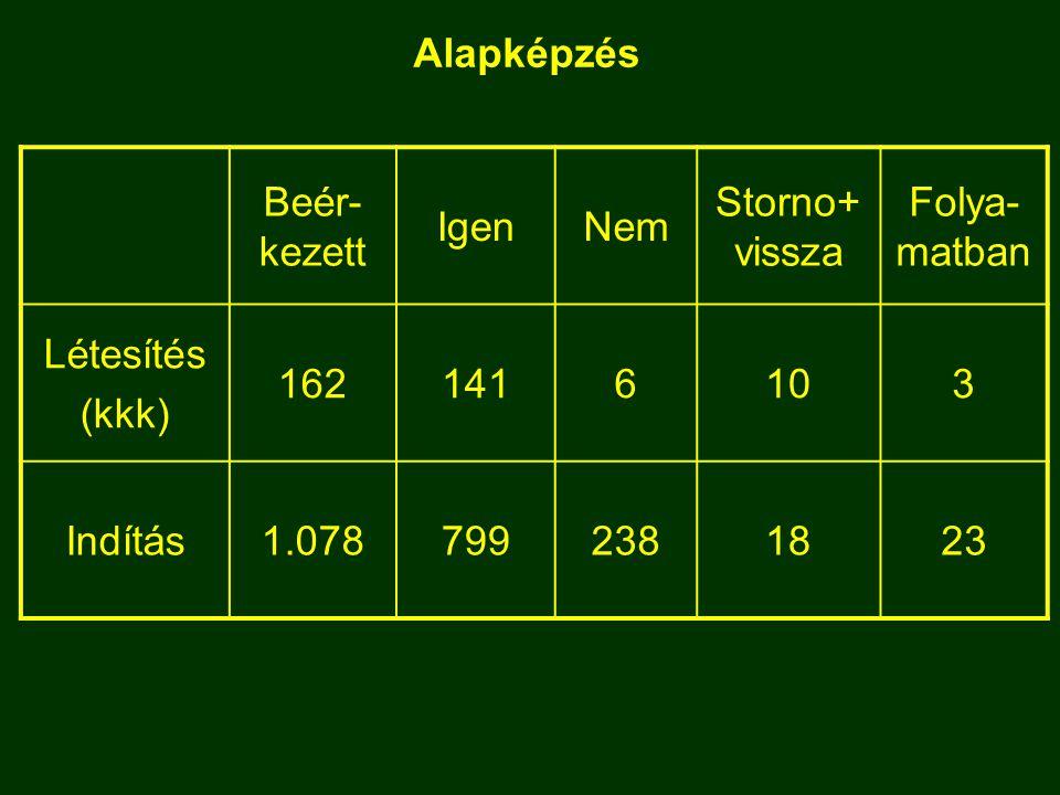 Alapképzés Beér- kezett IgenNem Storno+ vissza Folya- matban Létesítés (kkk) 1621416103 Indítás1.0787992381823