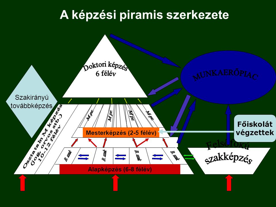 Alapképzés (6-8 félév) Mesterképzés (2-5 félév) A képzési piramis szerkezete Főiskolát végzettek Szakirányú továbbképzés