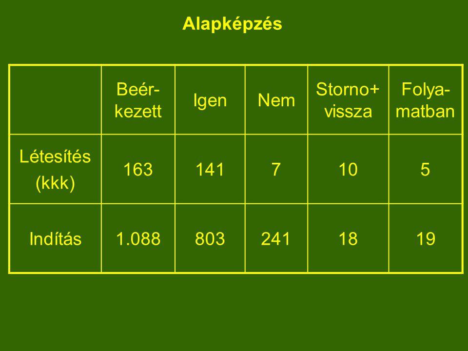Mesterképzés Beér- kezett IgenNem Storno+ vissza Folya- matban Létesítés (kkk) 442313652143 Indítás83145116213205