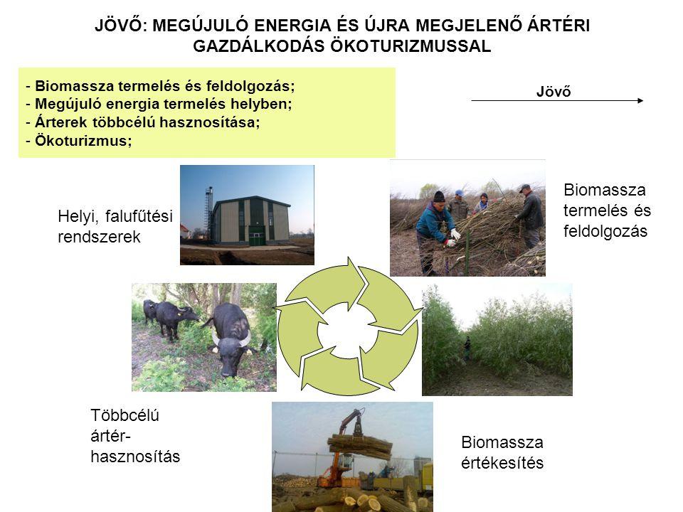 JÖVŐ: MEGÚJULÓ ENERGIA ÉS ÚJRA MEGJELENŐ ÁRTÉRI GAZDÁLKODÁS ÖKOTURIZMUSSAL Jövő - Biomassza termelés és feldolgozás; - Megújuló energia termelés helyben; - Árterek többcélú hasznosítása; - Ökoturizmus; Biomassza termelés és feldolgozás Biomassza értékesítés Többcélú ártér- hasznosítás Helyi, falufűtési rendszerek