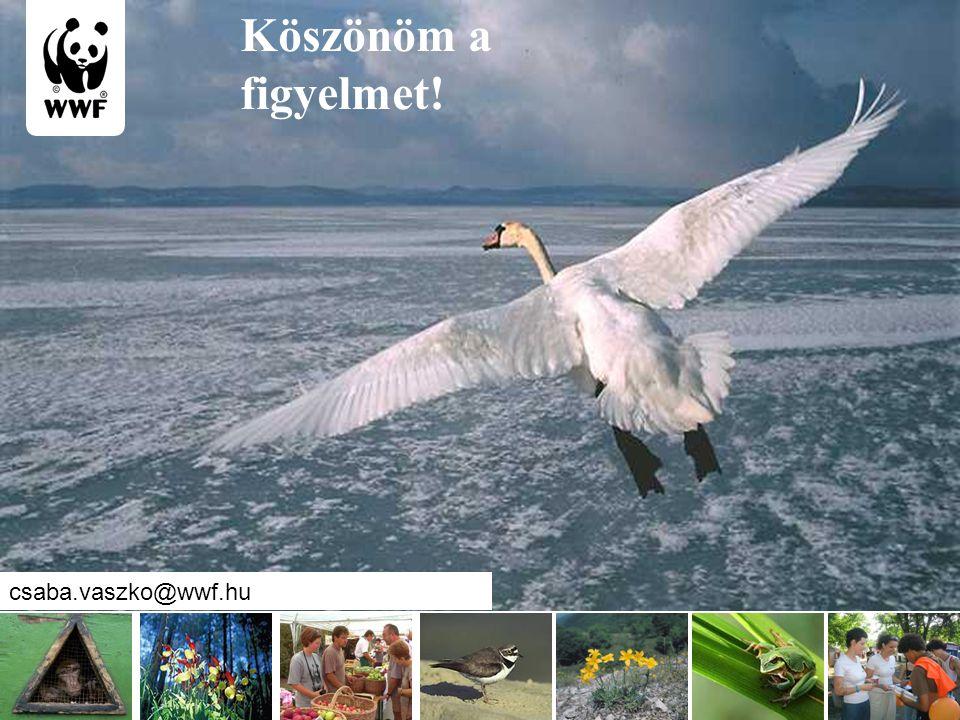 www.wwf.hu Köszönöm a figyelmet! csaba.vaszko@wwf.hu