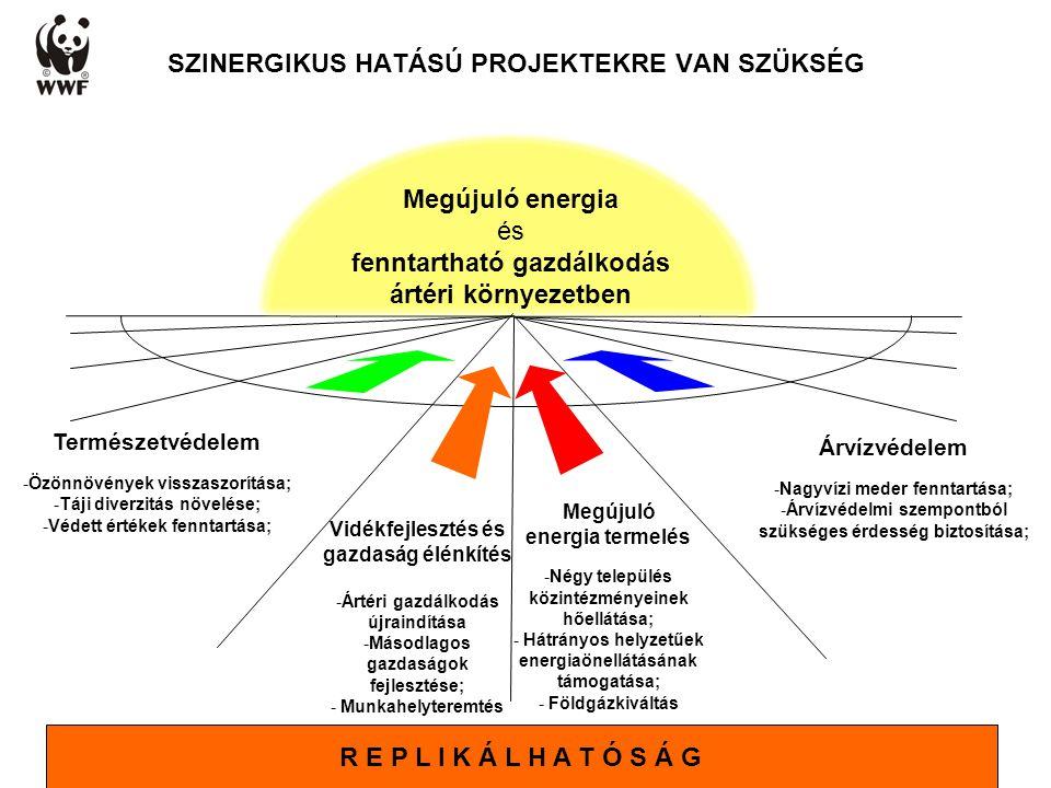 SZINERGIKUS HATÁSÚ PROJEKTEKRE VAN SZÜKSÉG Megújuló energia termelés -Négy település közintézményeinek hőellátása; - Hátrányos helyzetűek energiaönellátásának támogatása; - Földgázkiváltás Árvízvédelem -Nagyvízi meder fenntartása; -Árvízvédelmi szempontból szükséges érdesség biztosítása; Természetvédelem -Özönnövények visszaszorítása; -Táji diverzitás növelése; -Védett értékek fenntartása; Vidékfejlesztés és gazdaság élénkítés -Ártéri gazdálkodás újraindítása -Másodlagos gazdaságok fejlesztése; - Munkahelyteremtés Megújuló energia és fenntartható gazdálkodás ártéri környezetben R E P L I K Á L H A T Ó S Á G
