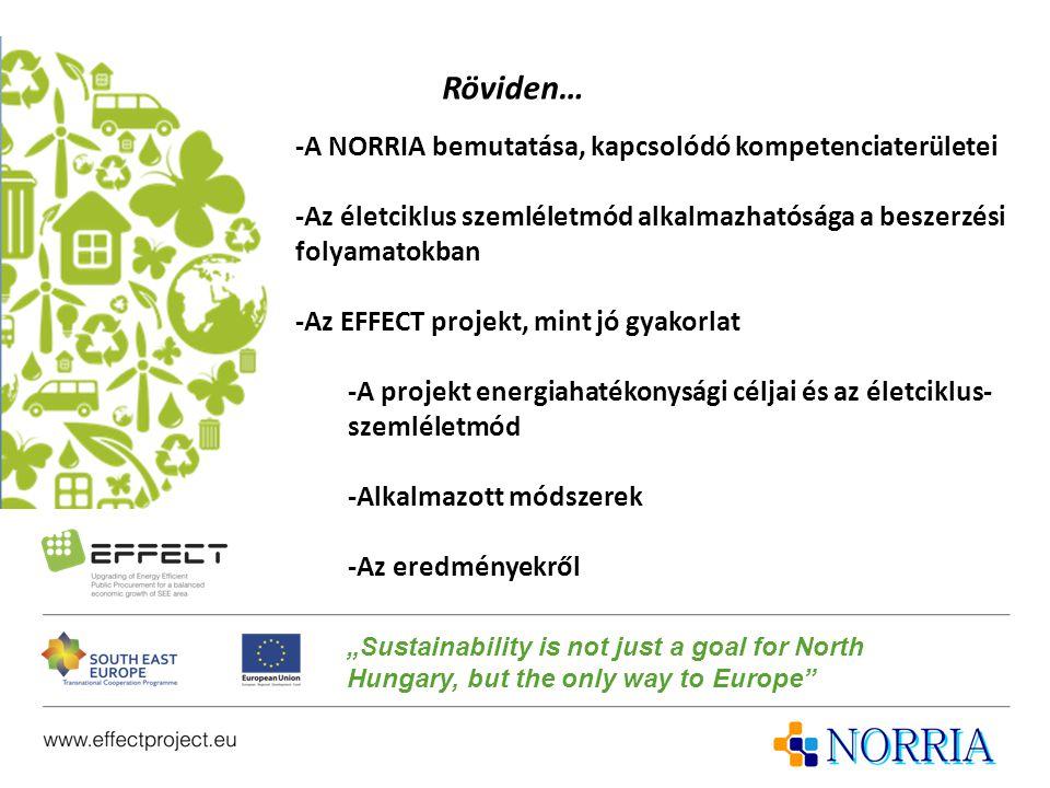 Röviden… -A NORRIA bemutatása, kapcsolódó kompetenciaterületei -Az életciklus szemléletmód alkalmazhatósága a beszerzési folyamatokban -Az EFFECT proj