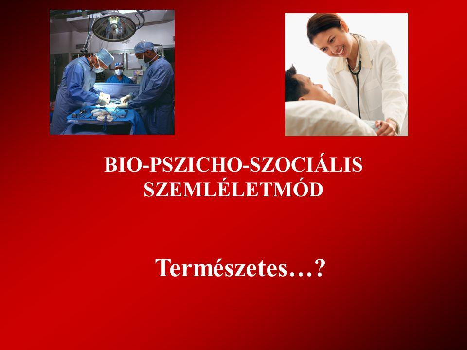 INDIKÁTOROK KÉSZSÉGEK Betegközpontú kommunikáció (megléte, működése) Komm.