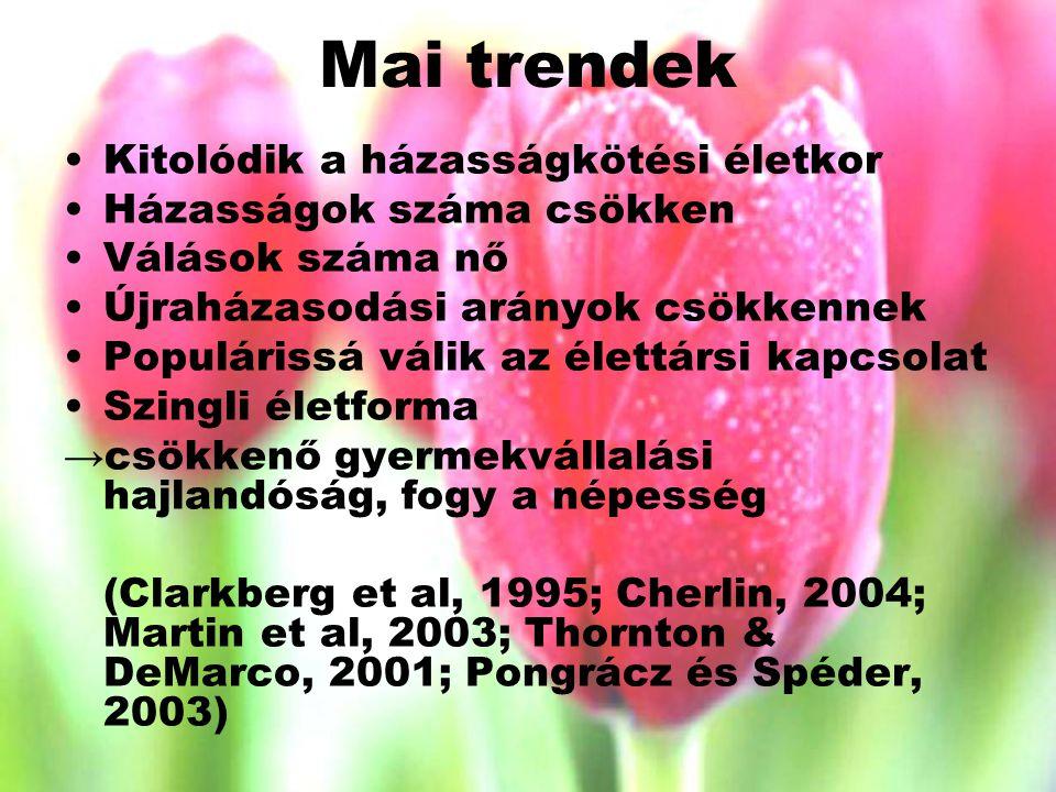 Mai trendek Kitolódik a házasságkötési életkor Házasságok száma csökken Válások száma nő Újraházasodási arányok csökkennek Populárissá válik az élettársi kapcsolat Szingli életforma →csökkenő gyermekvállalási hajlandóság, fogy a népesség (Clarkberg et al, 1995; Cherlin, 2004; Martin et al, 2003; Thornton & DeMarco, 2001; Pongrácz és Spéder, 2003)