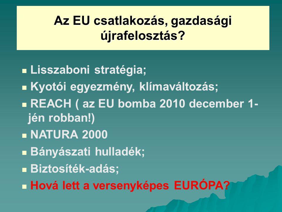Az EU csatlakozás, gazdasági újrafelosztás.