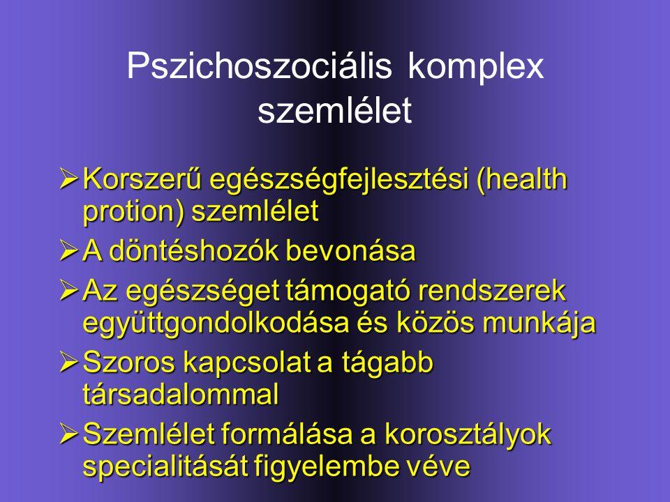Pszichoszociális komplex szemlélet  Korszerű egészségfejlesztési (health protion) szemlélet  A döntéshozók bevonása  Az egészséget támogató rendsze