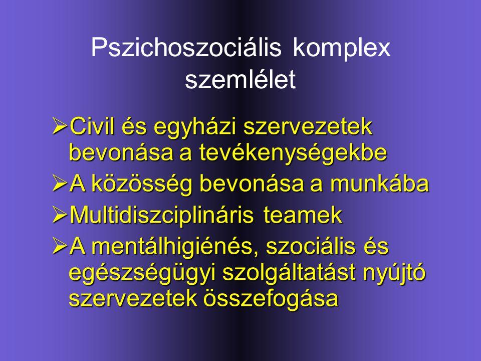 Pszichoszociális komplex szemlélet  Civil és egyházi szervezetek bevonása a tevékenységekbe  A közösség bevonása a munkába  Multidiszciplináris tea