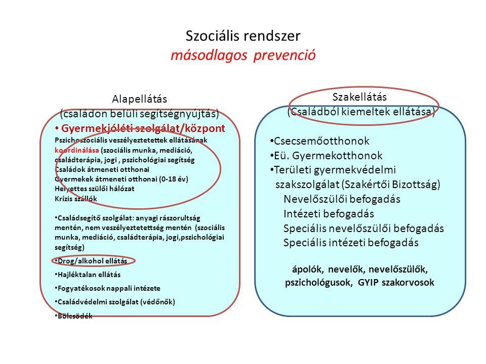 Szociális rendszer másodlagos prevenció Alapellátás (családon belüli segítségnyújtás) Gyermekjóléti szolgálat/központ Pszichoszociális veszélyeztetett