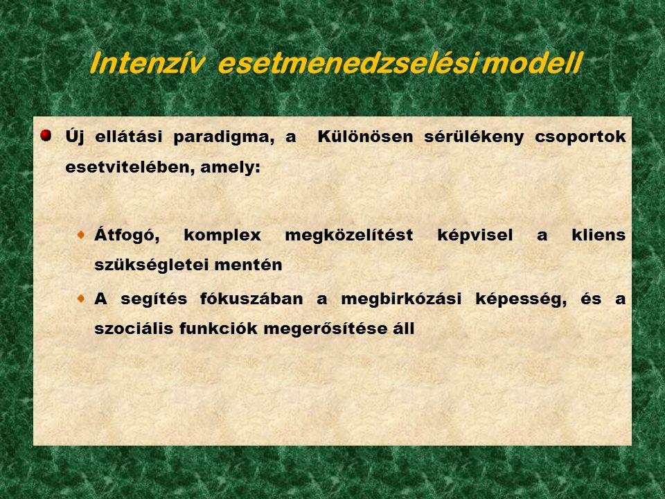 Intenzív esetmenedzselési modell Új ellátási paradigma, a Különösen sérülékeny csoportok esetvitelében, amely: Átfogó, komplex megközelítést képvisel