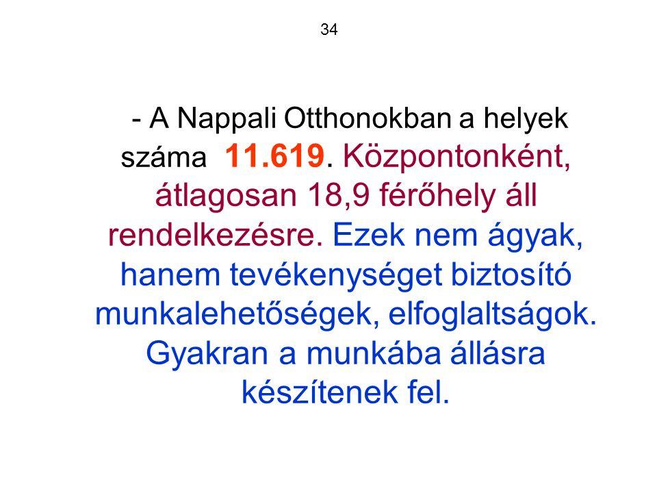 34 - A Nappali Otthonokban a helyek száma 11.619.