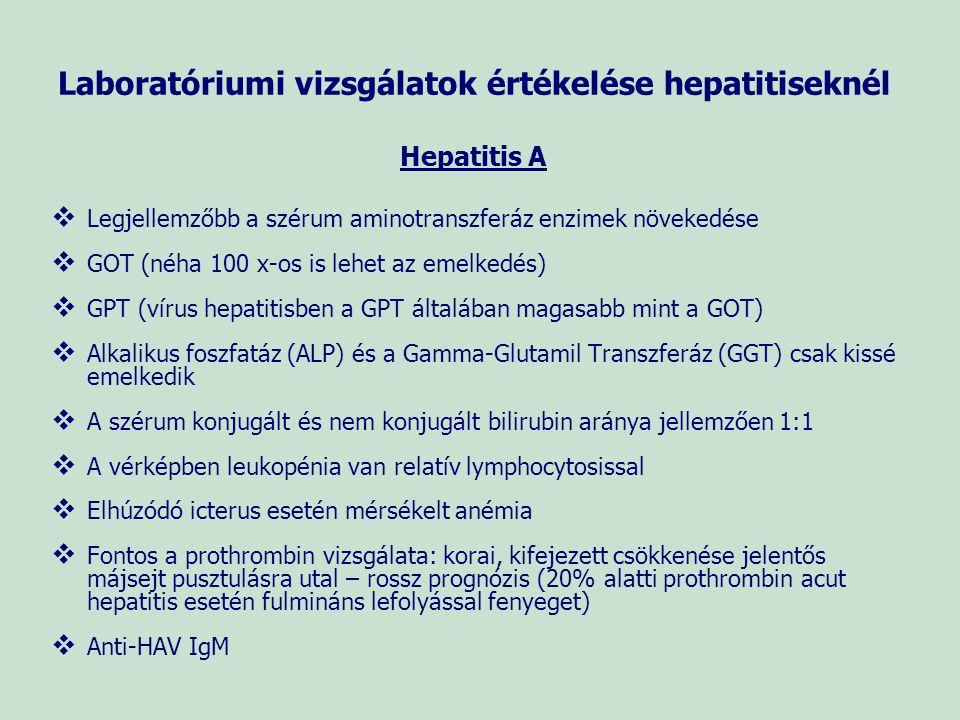 Laboratóriumi vizsgálatok értékelése hepatitiseknél Hepatitis A   Legjellemzőbb a szérum aminotranszferáz enzimek növekedése   GOT (néha 100 x-os