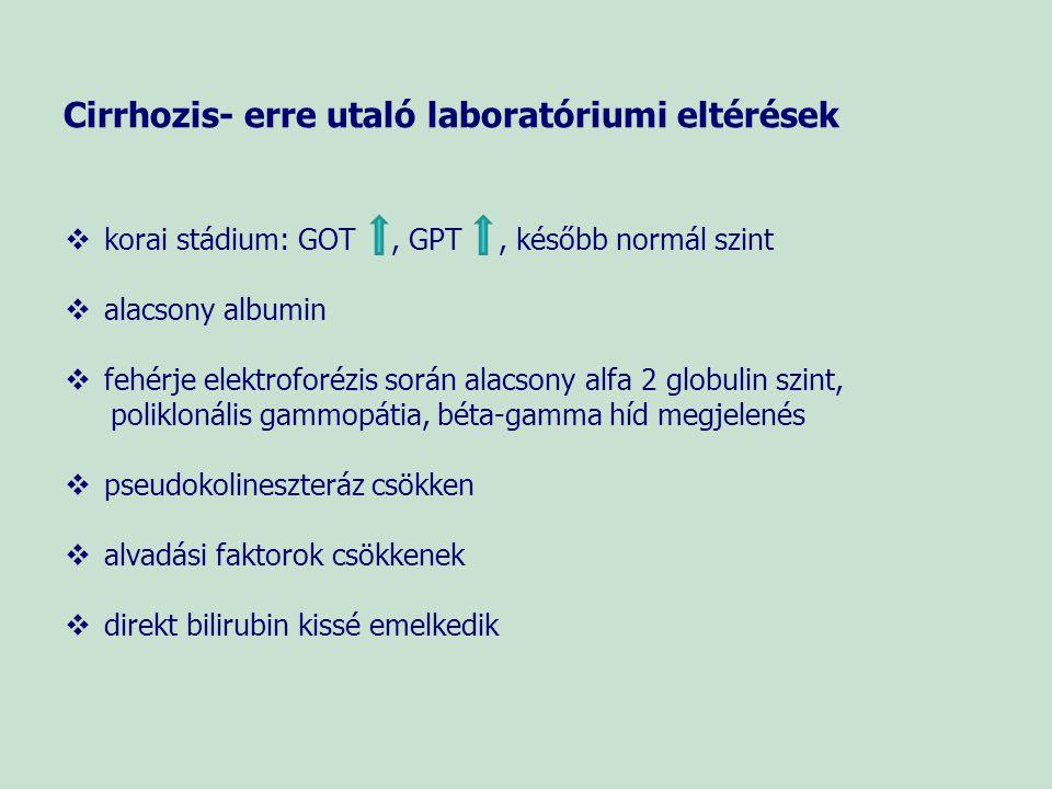 Cirrhozis- erre utaló laboratóriumi eltérések   korai stádium: GOT, GPT, később normál szint   alacsony albumin   fehérje elektroforézis során a