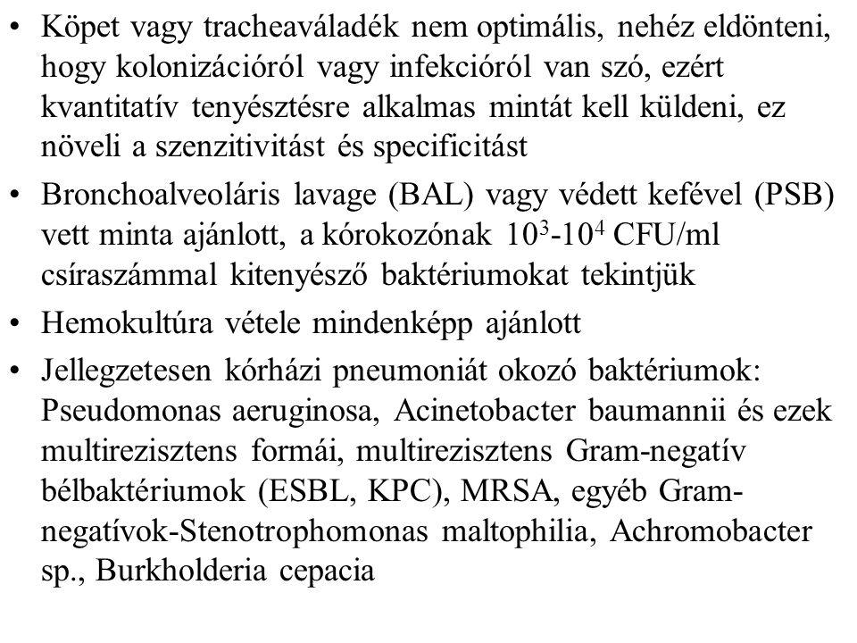 Köpet vagy tracheaváladék nem optimális, nehéz eldönteni, hogy kolonizációról vagy infekcióról van szó, ezért kvantitatív tenyésztésre alkalmas mintát kell küldeni, ez növeli a szenzitivitást és specificitást Bronchoalveoláris lavage (BAL) vagy védett kefével (PSB) vett minta ajánlott, a kórokozónak 10 3 -10 4 CFU/ml csíraszámmal kitenyésző baktériumokat tekintjük Hemokultúra vétele mindenképp ajánlott Jellegzetesen kórházi pneumoniát okozó baktériumok: Pseudomonas aeruginosa, Acinetobacter baumannii és ezek multirezisztens formái, multirezisztens Gram-negatív bélbaktériumok (ESBL, KPC), MRSA, egyéb Gram- negatívok-Stenotrophomonas maltophilia, Achromobacter sp., Burkholderia cepacia