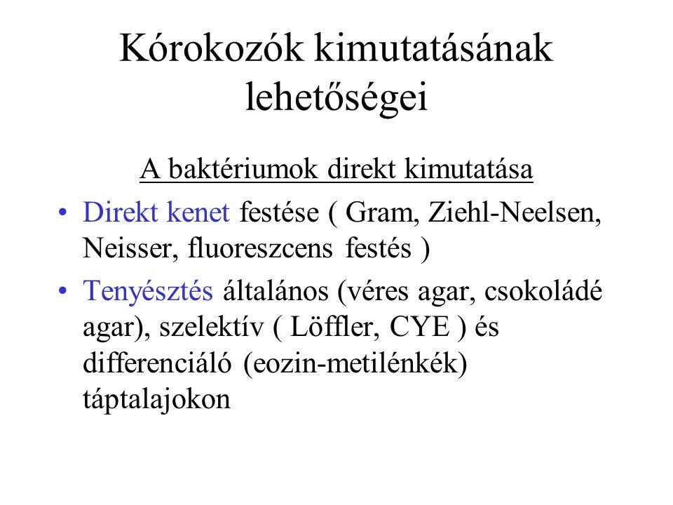 Kórokozók kimutatásának lehetőségei A baktériumok direkt kimutatása Direkt kenet festése ( Gram, Ziehl-Neelsen, Neisser, fluoreszcens festés ) Tenyésztés általános (véres agar, csokoládé agar), szelektív ( Löffler, CYE ) és differenciáló (eozin-metilénkék) táptalajokon