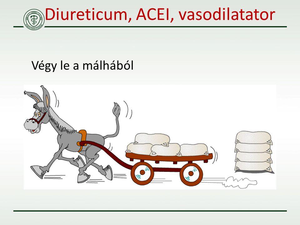 Végy le a málhából Diureticum, ACEI, vasodilatator